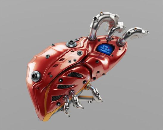 Liver robotic organ